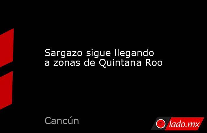Sargazo sigue llegando a zonas de Quintana Roo. Noticias en tiempo real