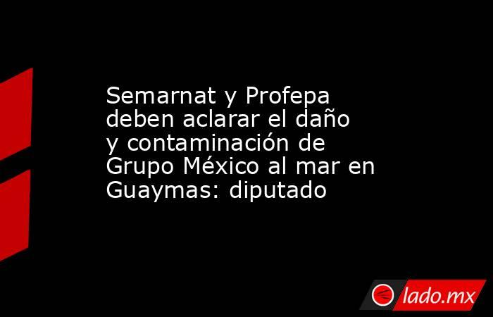 Semarnat y Profepa deben aclarar el daño y contaminación de Grupo México al mar en Guaymas: diputado. Noticias en tiempo real