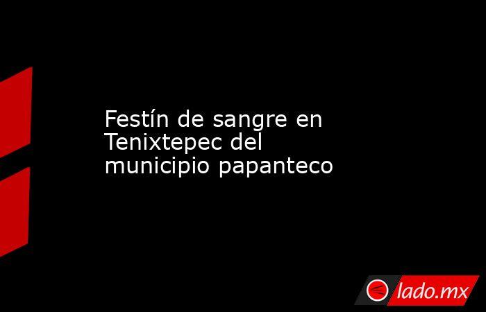 Festín de sangre en Tenixtepec del municipio papanteco. Noticias en tiempo real