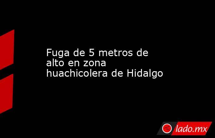 Fuga de 5 metros de alto en zona huachicolera de Hidalgo. Noticias en tiempo real
