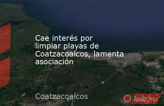 Cae interés por limpiar playas de Coatzacoalcos, lamenta asociación. Noticias en tiempo real