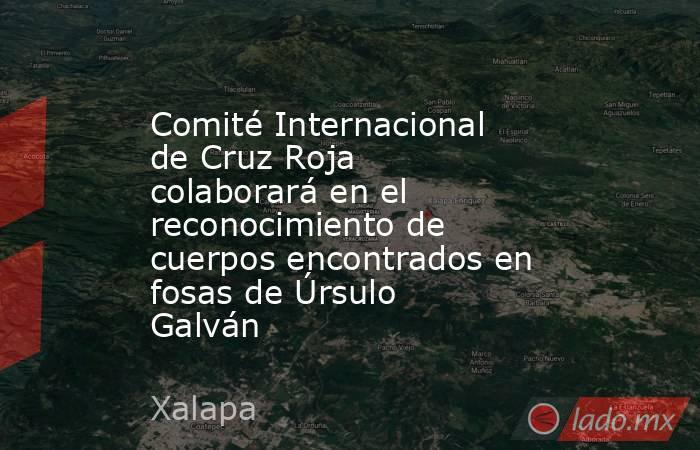 Comité Internacional de Cruz Roja colaborará en el reconocimiento de cuerpos encontrados en fosas de Úrsulo Galván. Noticias en tiempo real
