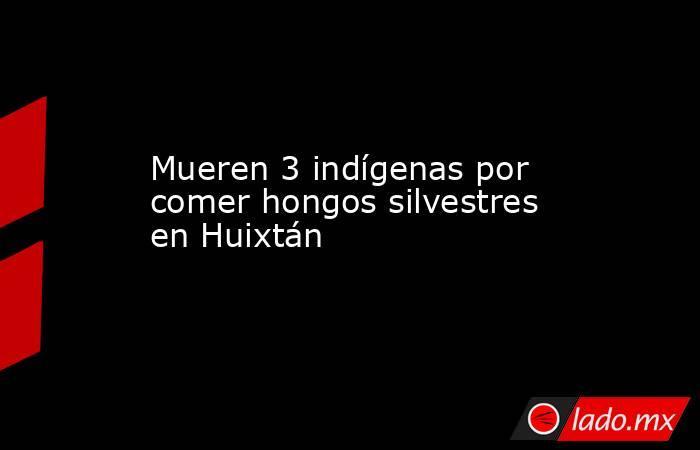 Mueren 3 indígenas por comer hongos silvestres en Huixtán. Noticias en tiempo real