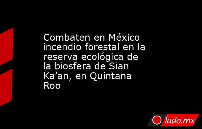 Combaten en México incendio forestal en la reserva ecológica de la biosfera de Sian Ka'an, en Quintana Roo. Noticias en tiempo real