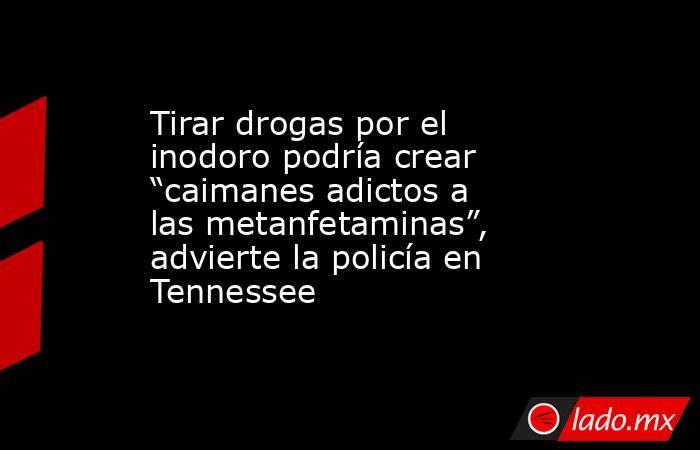 """Tirar drogas por el inodoro podría crear """"caimanes adictos a las metanfetaminas"""", advierte la policía en Tennessee. Noticias en tiempo real"""