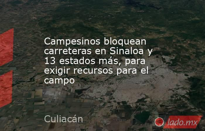 Campesinos bloquean carreteras en Sinaloa y 13 estados más, para exigir recursos para el campo. Noticias en tiempo real