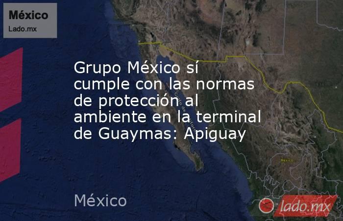 Grupo México sí cumple con las normas de protección al ambiente en la terminal de Guaymas: Apiguay. Noticias en tiempo real