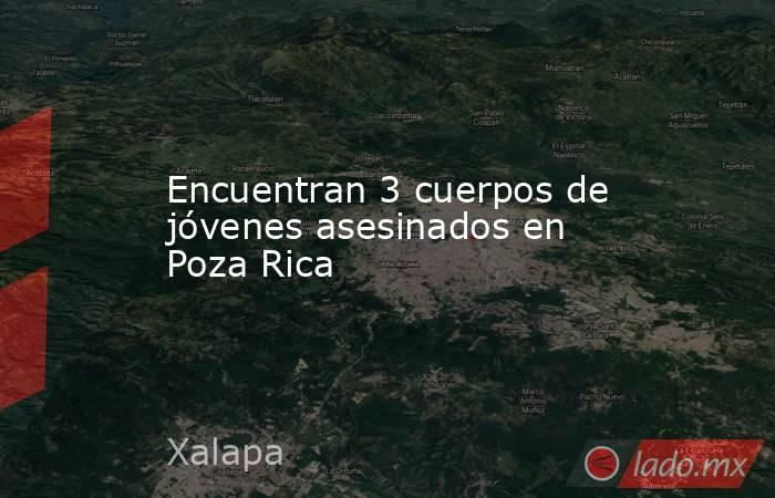Encuentran 3 cuerpos de jóvenes asesinados en Poza Rica. Noticias en tiempo real