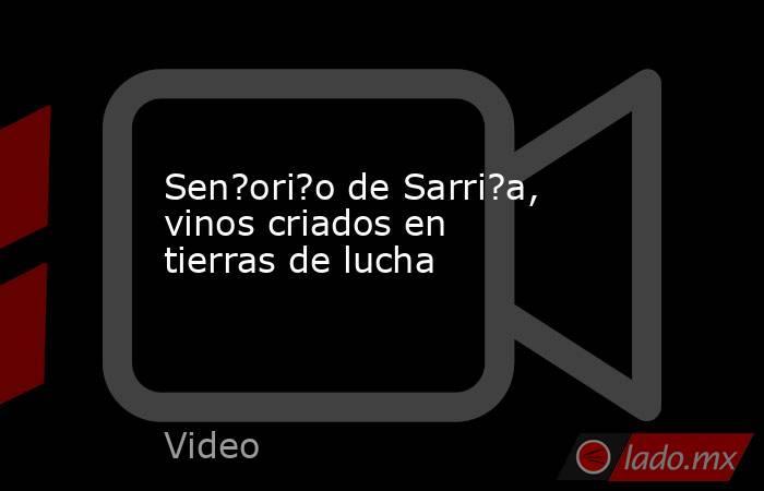 Sen?ori?o de Sarri?a, vinos criados en tierras de lucha. Noticias en tiempo real