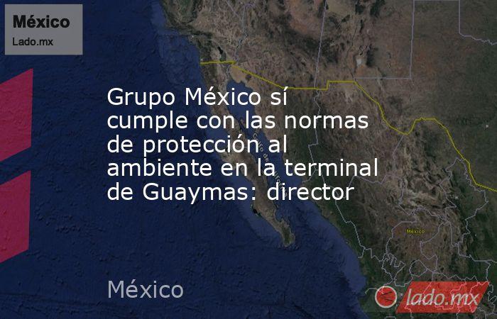 Grupo México sí cumple con las normas de protección al ambiente en la terminal de Guaymas: director. Noticias en tiempo real