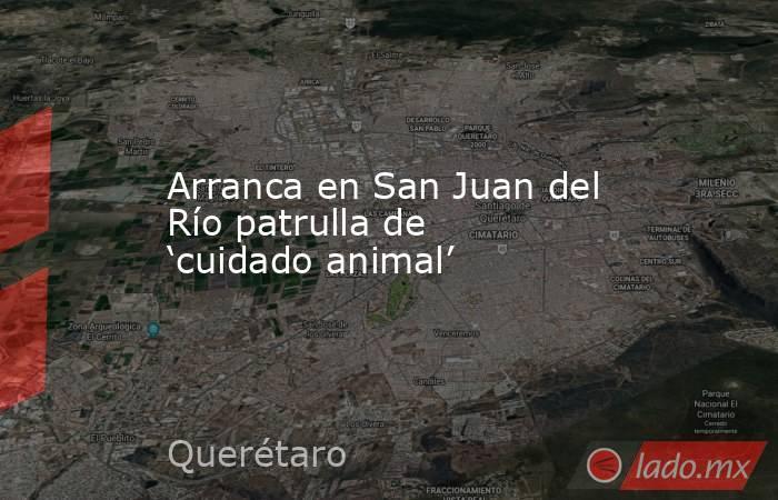 Arranca en San Juan del Río patrulla de 'cuidado animal'. Noticias en tiempo real