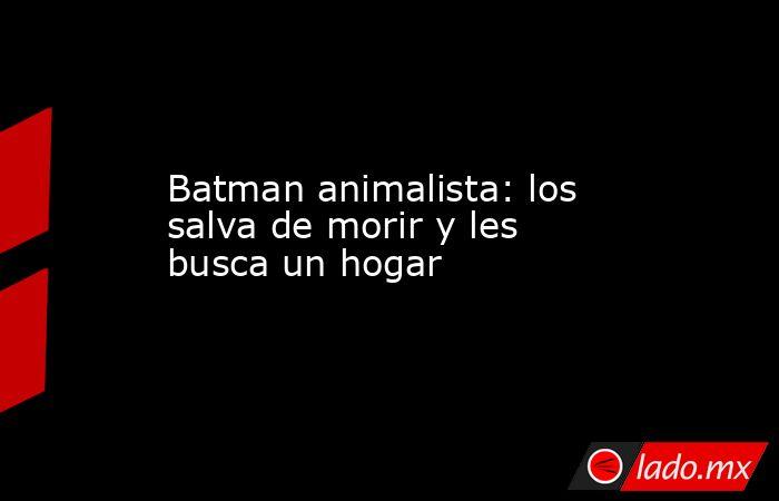 Batman animalista: los salva de morir y les busca un hogar. Noticias en tiempo real