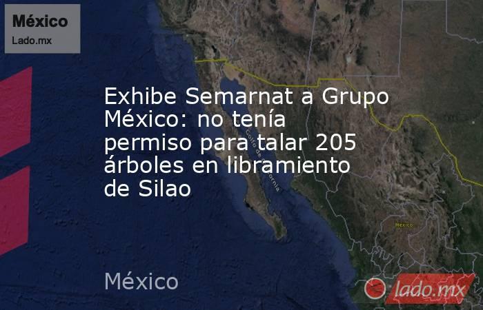 Exhibe Semarnat a Grupo México: no tenía permiso para talar 205 árboles en libramiento de Silao. Noticias en tiempo real
