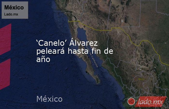 'Canelo' Álvarez peleará hasta fin de año. Noticias en tiempo real