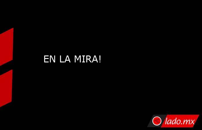 EN LA MIRA!. Noticias en tiempo real