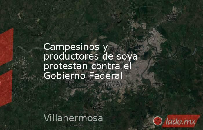 Campesinos y productores de soya protestan contra el Gobierno Federal. Noticias en tiempo real
