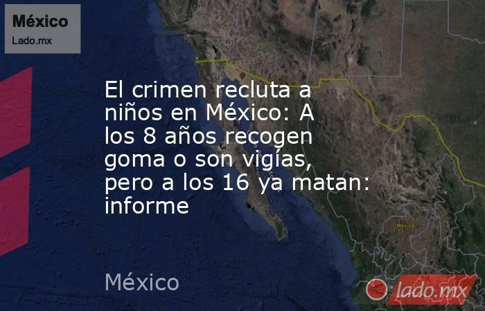 El crimen recluta a niños en México: A los 8 años recogen goma o son vigías, pero a los 16 ya matan: informe. Noticias en tiempo real