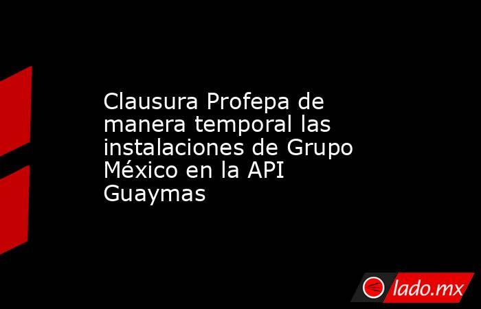 Clausura Profepa de manera temporal las instalaciones de Grupo México en la API Guaymas. Noticias en tiempo real