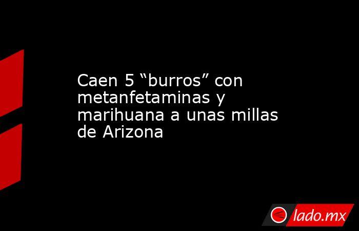 """Caen 5 """"burros"""" con metanfetaminas y marihuana a unas millas de Arizona. Noticias en tiempo real"""