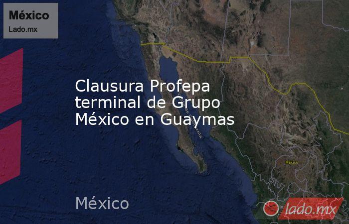 Clausura Profepa terminal de Grupo México en Guaymas . Noticias en tiempo real