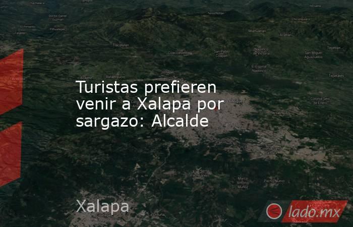 Turistas prefieren venir a Xalapa por sargazo: Alcalde. Noticias en tiempo real