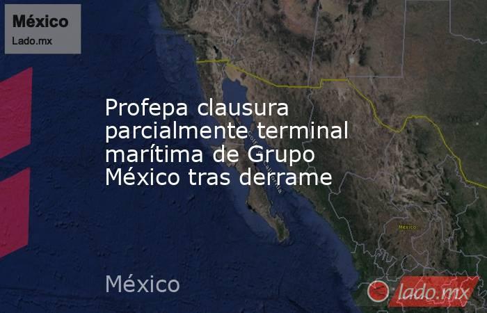 Profepa clausura parcialmente terminal marítima de Grupo México tras derrame. Noticias en tiempo real