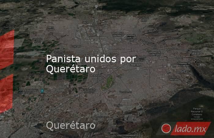 Panista unidos por Querétaro. Noticias en tiempo real