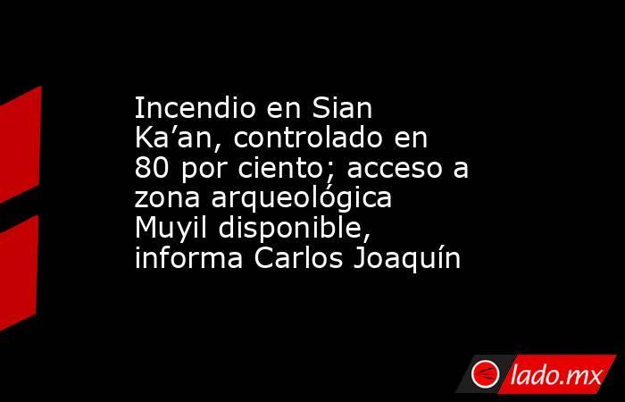 Incendio en Sian Ka'an, controlado en 80 por ciento; acceso a zona arqueológica Muyil disponible, informa Carlos Joaquín. Noticias en tiempo real