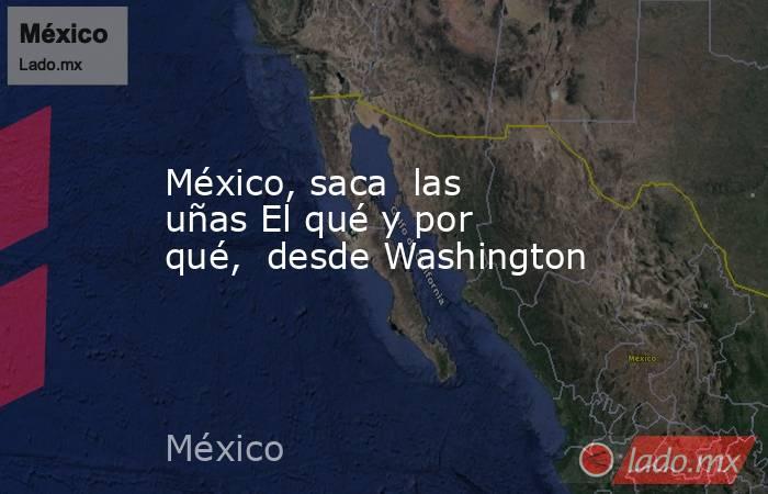 México, saca  las uñas El qué y por qué,  desde Washington. Noticias en tiempo real