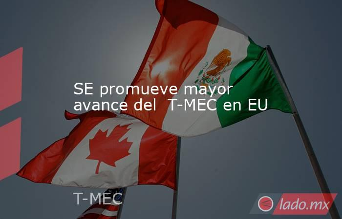 SE promueve mayor avance del  T-MEC en EU. Noticias en tiempo real