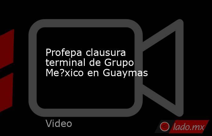 Profepa clausura terminal de Grupo Me?xico en Guaymas. Noticias en tiempo real