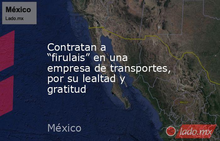 """Contratan a """"firulais"""" en una empresa de transportes, por su lealtad y gratitud. Noticias en tiempo real"""