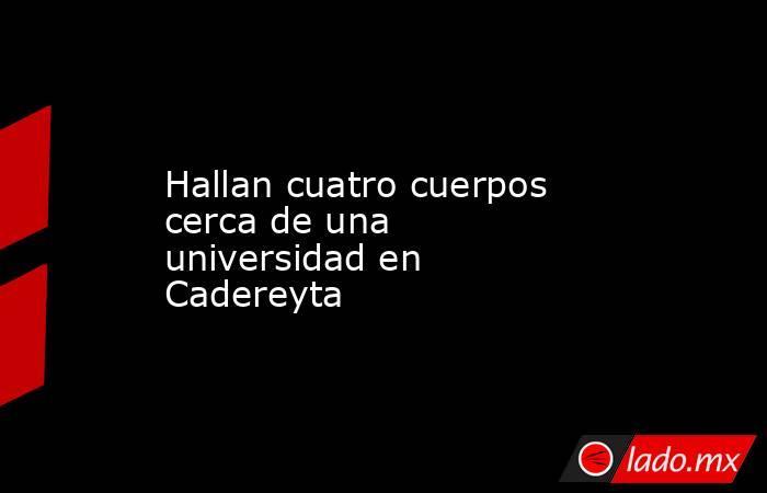 Hallan cuatro cuerpos cerca de una universidad en Cadereyta. Noticias en tiempo real