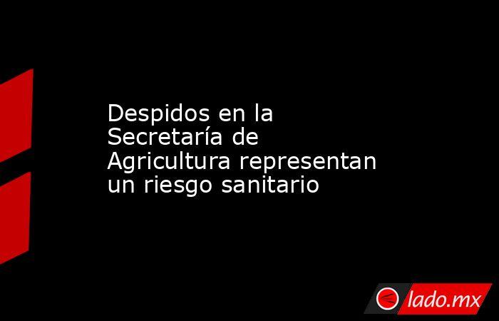 Despidos en la Secretaría de Agricultura representan un riesgo sanitario. Noticias en tiempo real