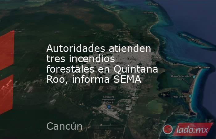 Autoridades atienden tres incendios forestales en Quintana Roo, informa SEMA. Noticias en tiempo real