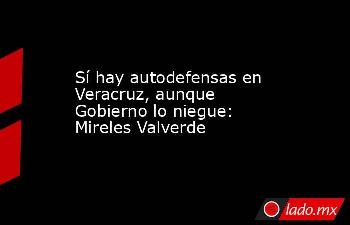 Sí hay autodefensas en Veracruz, aunque Gobierno lo niegue: Mireles Valverde. Noticias en tiempo real