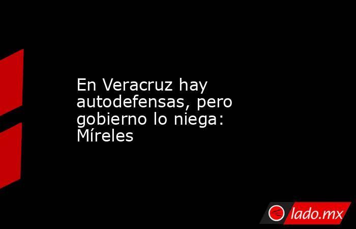 En Veracruz hay autodefensas, pero gobierno lo niega: Míreles. Noticias en tiempo real