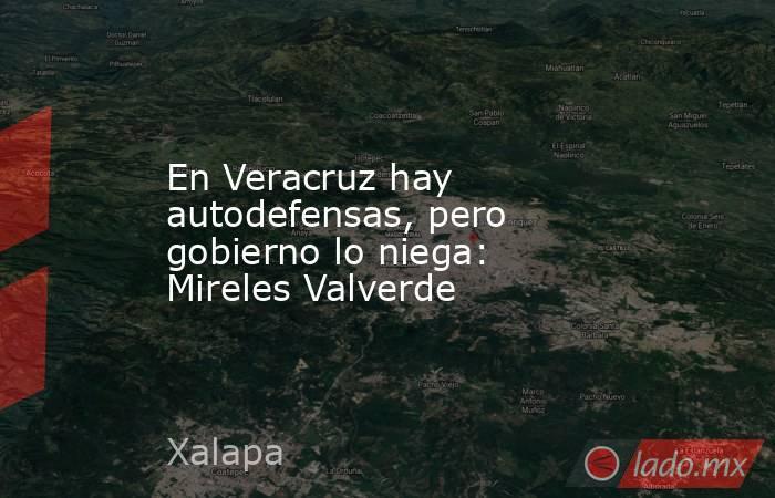En Veracruz hay autodefensas, pero gobierno lo niega: Mireles Valverde. Noticias en tiempo real