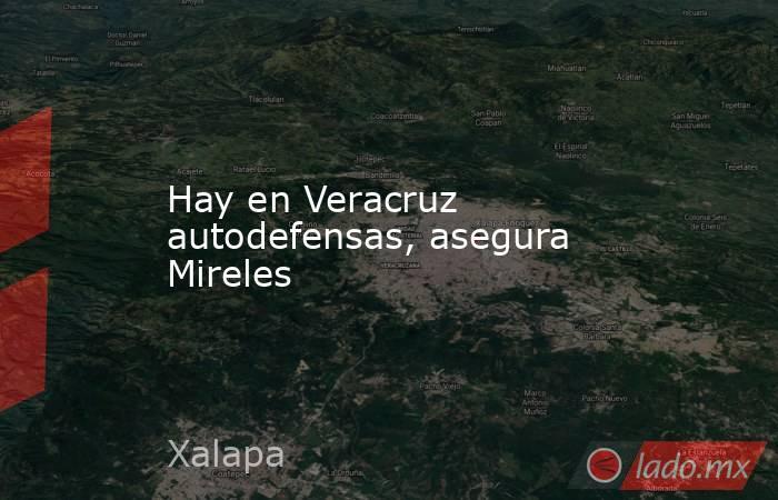 Hay en Veracruz autodefensas, asegura Mireles. Noticias en tiempo real