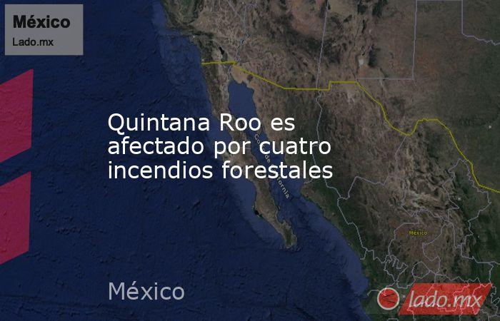 Quintana Roo es afectado por cuatro incendios forestales. Noticias en tiempo real