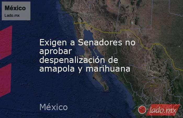 Exigen a Senadores no aprobar despenalización de amapola y marihuana. Noticias en tiempo real