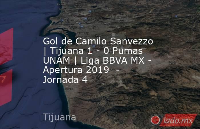 Gol de Camilo Sanvezzo | Tijuana 1 - 0 Pumas UNAM | Liga BBVA MX - Apertura 2019  - Jornada 4. Noticias en tiempo real