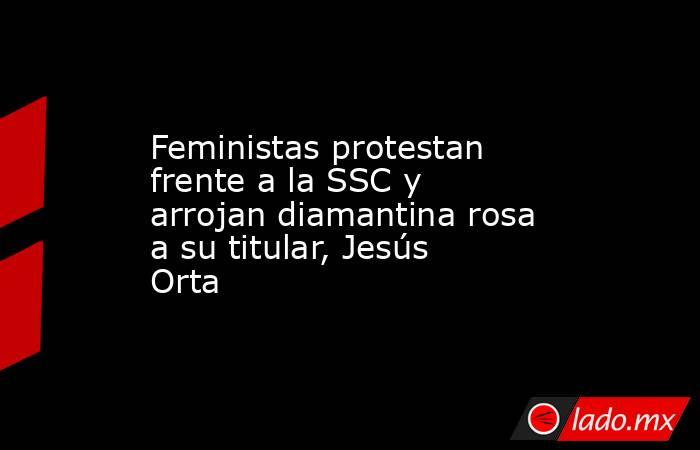 Feministas protestan frente a la SSC y arrojan diamantina rosa a su titular, Jesús Orta. Noticias en tiempo real