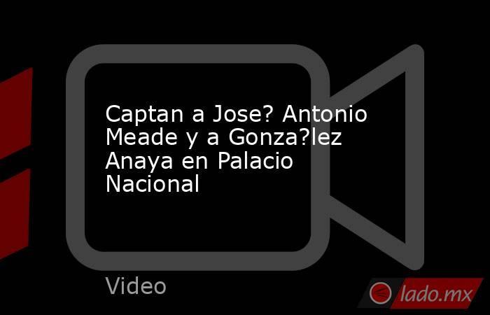 Captan a Jose? Antonio Meade y a Gonza?lez Anaya en Palacio Nacional. Noticias en tiempo real