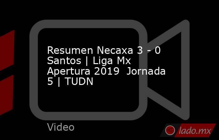 Resumen Necaxa 3 - 0 Santos | Liga Mx Apertura 2019  Jornada 5 | TUDN. Noticias en tiempo real