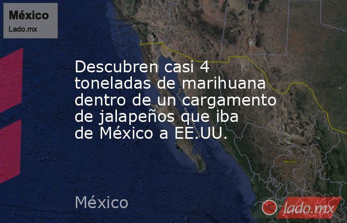 Descubren casi 4 toneladas de marihuana dentro de un cargamento de jalapeños que iba de México a EE.UU.. Noticias en tiempo real