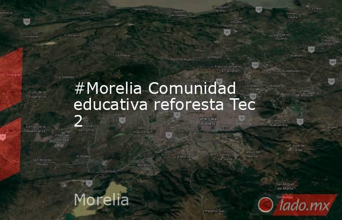 #Morelia Comunidad educativa reforesta Tec 2. Noticias en tiempo real