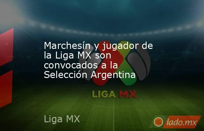 Marchesín y jugador de la Liga MX son convocados a la Selección Argentina . Noticias en tiempo real
