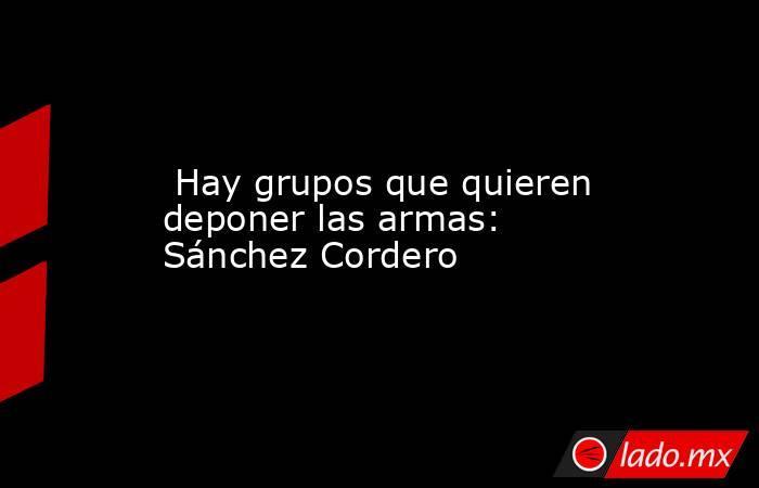 Hay grupos que quieren deponer las armas: Sánchez Cordero. Noticias en tiempo real
