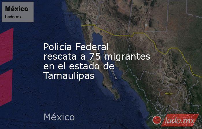 Policía Federal rescata a 75 migrantes en el estado de Tamaulipas. Noticias en tiempo real